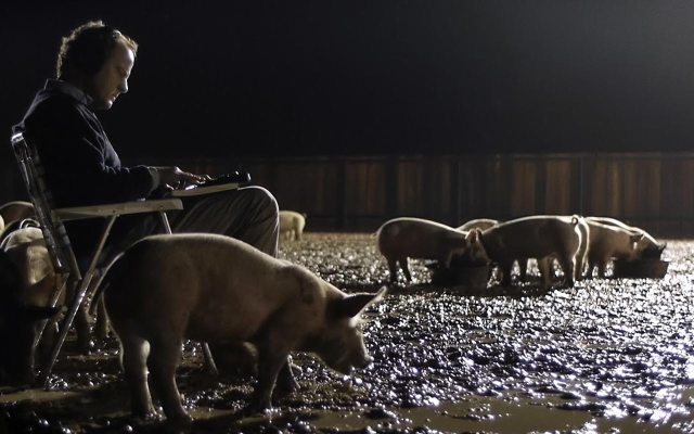 Upstream-Color-man-with-pigs-feature-image